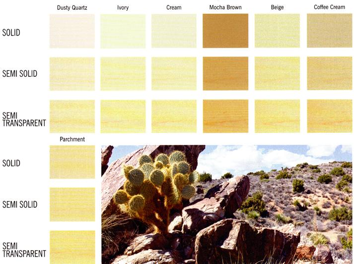 Desert Nuetral Tones