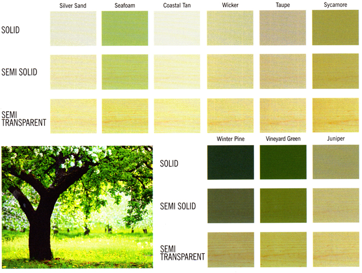 Leafy Green Tones